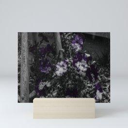 First Snow Of The Season Mini Art Print