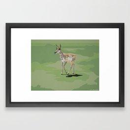 Bryce Canyon Pronghorn Framed Art Print
