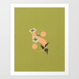 S for Shasta Daisy Art Print