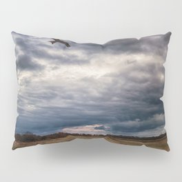 Peace in The Storm Pillow Sham