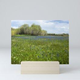 Field of Camas and Dandelions, No. 1 Mini Art Print