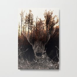 Raw Nature - Stian Norum collab Metal Print