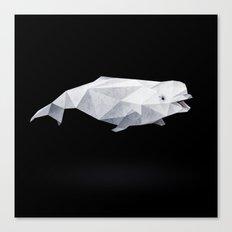 Beluga Whale. Canvas Print