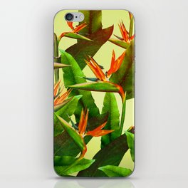 Birds of Paradise iPhone Skin