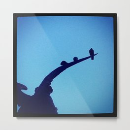 Birds on a Wing Metal Print