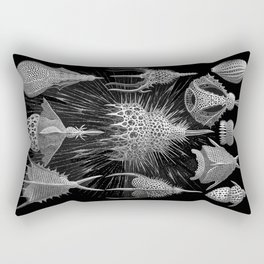 Plankton Shells (Cyrtoidea) by Ernst Haeckel Rectangular Pillow