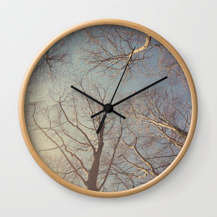 Trees ∆ Wall Clock