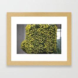 Longwood Gardens Autumn Series 277 Framed Art Print