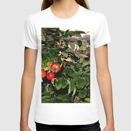 Rose Hips by the Sea, at Sunset (Wild Fresh, Bright and Ripe) T-shirt