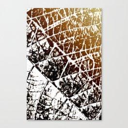 spooky shadows Canvas Print