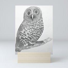 Little Morepork Owl Mini Art Print