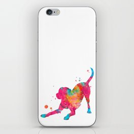 Colorful Playful Labrador iPhone Skin