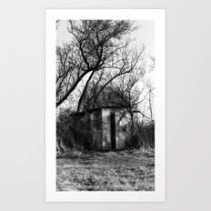 Shed Art Print