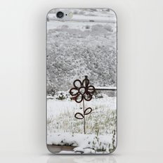 Spring Snow iPhone & iPod Skin