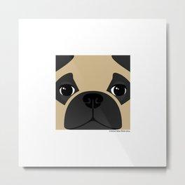 Pug Close Up Metal Print