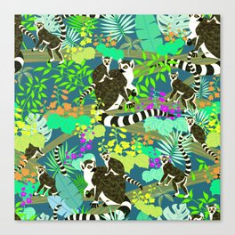 Lemur catta Canvas Print