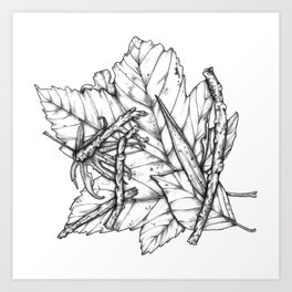 Leaves and Sticks Art Print