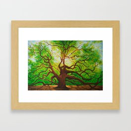 Angel Oak Framed Art Print