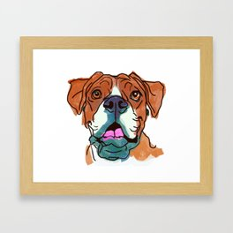 The Boxer cutie keeps you happy! Framed Art Print