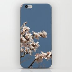 it's spring iPhone & iPod Skin