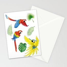 Tropical Feathers Stationery Cards