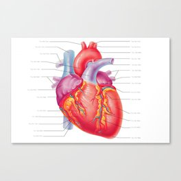 You Are Here (In My Heart) Canvas Print