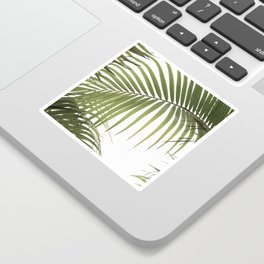 Palm Leaves Photo 01 Sticker