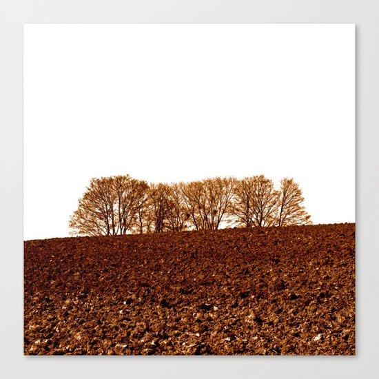 autumn field II Canvas Print