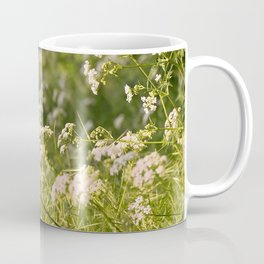 Flowering cow parsley (Anthriscus sylvestris) Coffee Mug