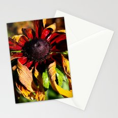 Still Vibrant Stationery Cards