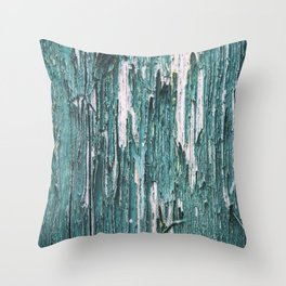 Paint and Texture II Throw Pillow