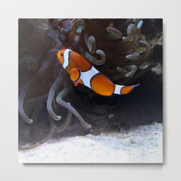 Sea Word Clowfish Metal Print