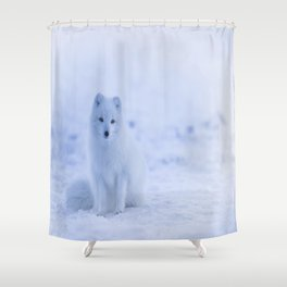 The Arctic Fox in Iceland Shower Curtain