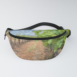 Grapevines in Spring Fanny Pack