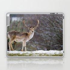 WINTER FALLOW DEER Laptop & iPad Skin
