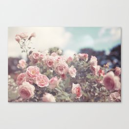 Cotton Candy Roses Canvas Print