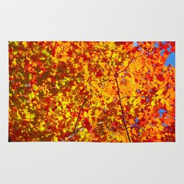 Blazing Fall Canopy Rug