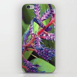 Longwood Gardens - Spring Series 73 iPhone Skin