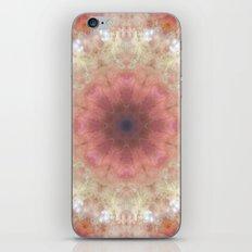 Space Mandala no8 iPhone & iPod Skin