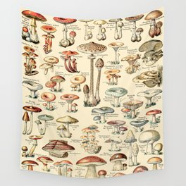 Trippy Vintage Mushroom Chart // Champignons by Adolphe Millot XL 19th Century Science Artwork Wall Tapestry