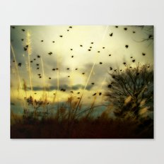 Bird Sunset Canvas Print