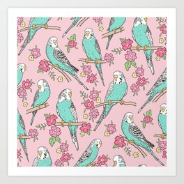 Budgie Birds With Blossom Flowers on Pink Art Print