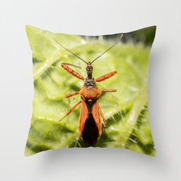 Red Spiny Assassin Bug Throw Pillow