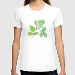 3 green rose leaves watercolor T-shirt