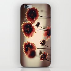 Daisy Chained iPhone & iPod Skin