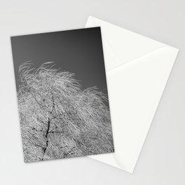Spring Breeze, Port Hope, Ontario Stationery Cards