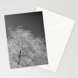 Spring Breeze, Port Hope, Ontario Stationery Cards