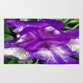 Purple in Bloom Rug