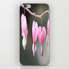 Bleeding Love iPhone & iPod Skin
