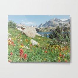 August Wildflowers in the Rockies Metal Print